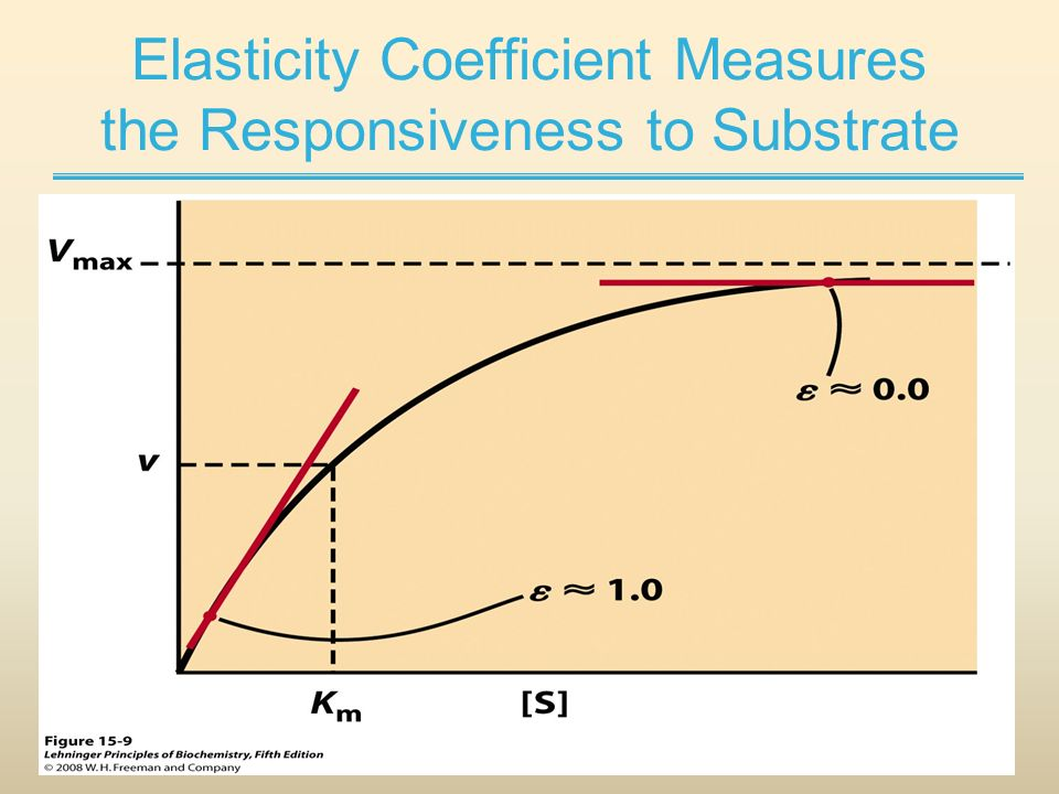 Elasticity Measurement.jpg